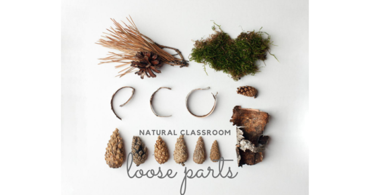 My top 10 sources for  natural classroom loose parts on a budget