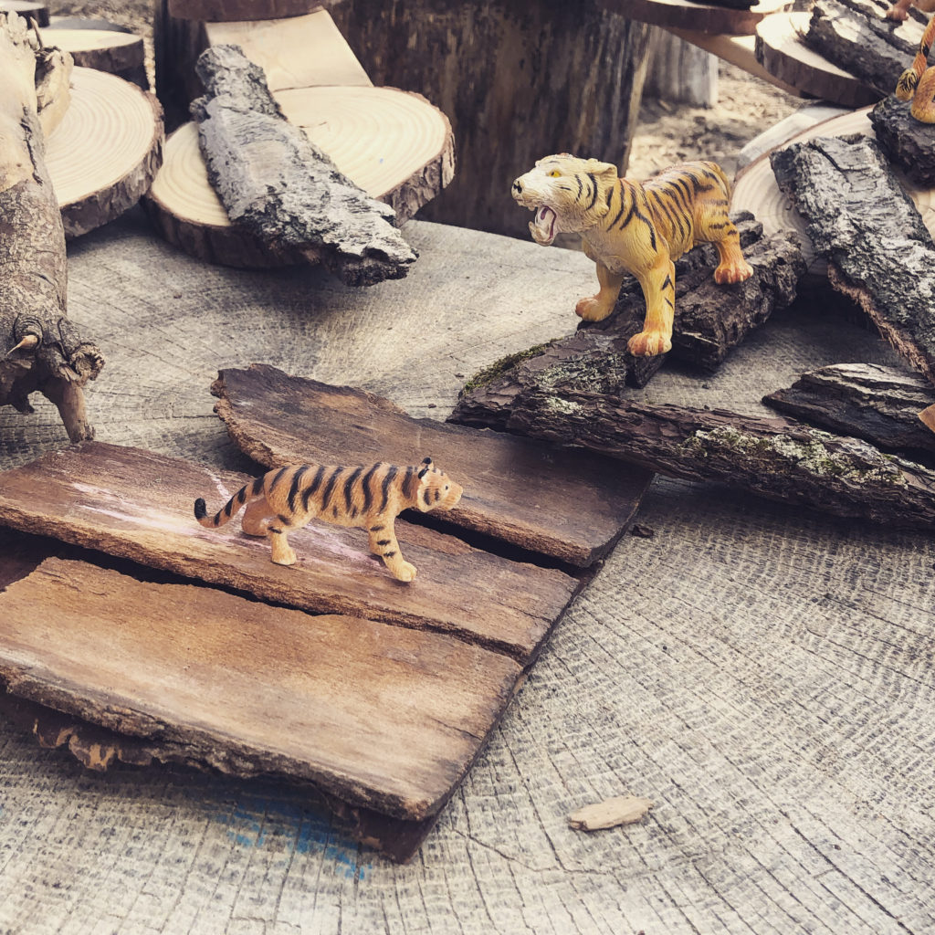 Loose part tiger habitats were part of our outdoor play this week.