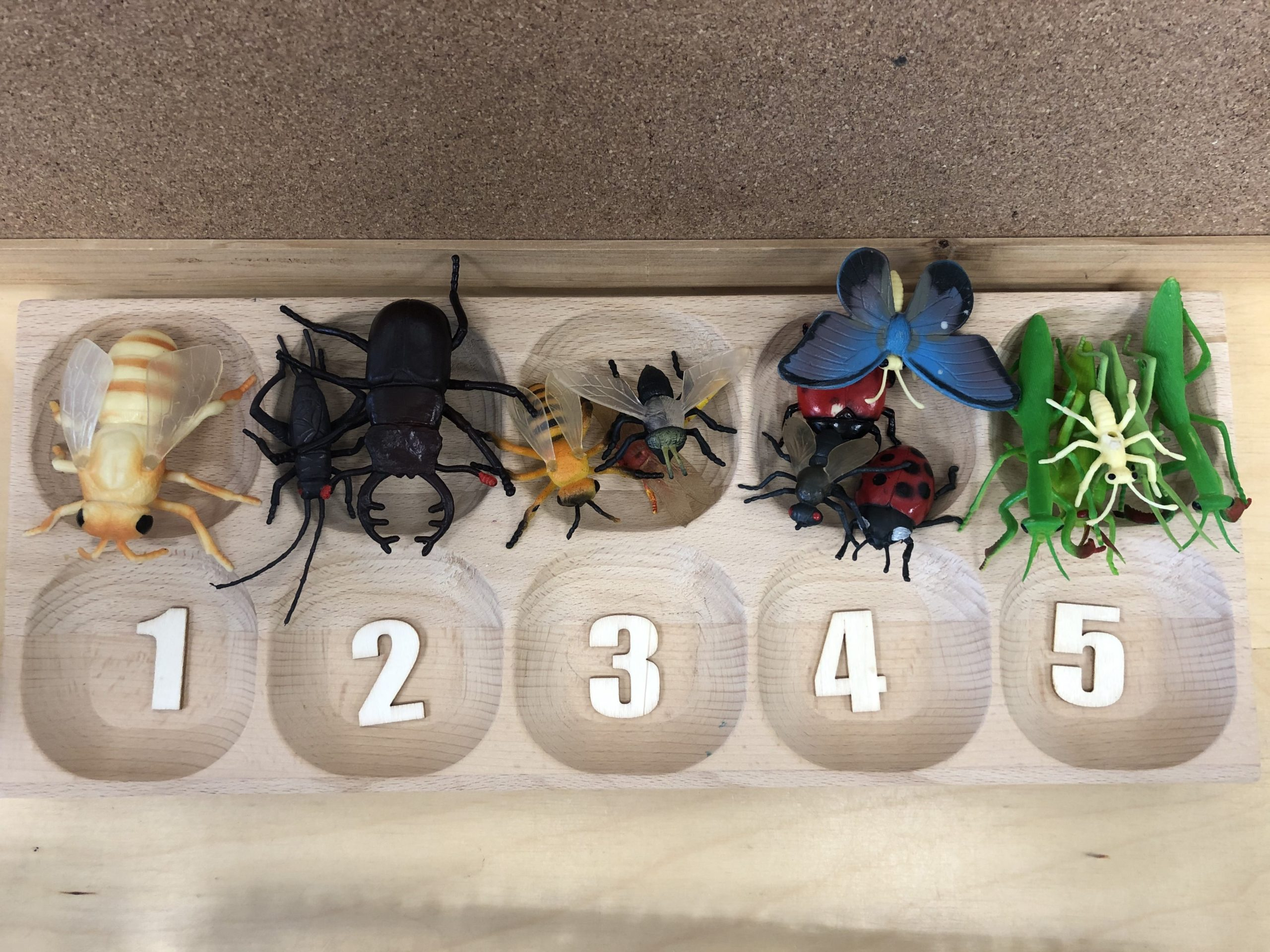 Our math centres were also dominated by insects as we worked on number recognition and subitizing. The insects made everything more fun.