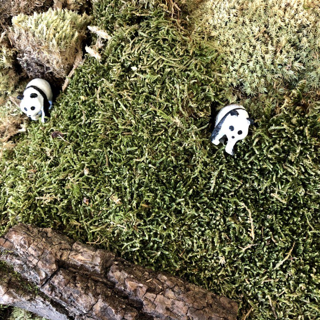 Panda habitat small world
